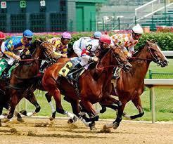 online wedden op paarden